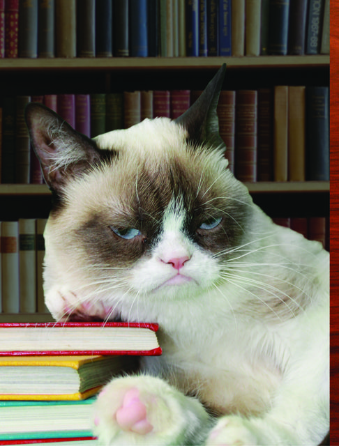Grumpy Cat's book recommendations